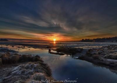 Estuary Sunrise